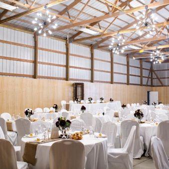Cheap Wedding Venues in Illinois - willowcreekfarmcu