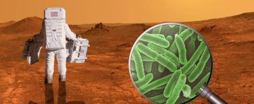 Searching for life on planet Mars - Elements of this image furnished by NASA (Shutterstock/Juergen Faelchle)