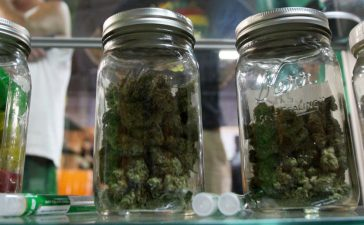 People look at jars of marijuana at the medical marijuana farmers market at the California Heritage Market in Los Angeles, California July 11, 2014. REUTERS/David McNew/File Photo
