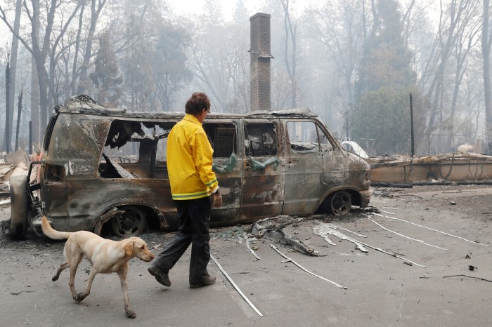 Karen Atkinson, of Marin, searches for human remains with her cadaver dog, Echo, in a neighborhood destroyed by the Camp Fire in Paradise, California, U.S., November 14, 2018. REUTERS/Terray Sylvester