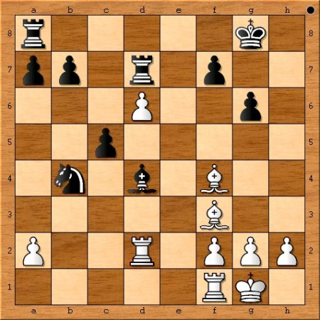 The position after Viswanathan Anand played 24. Rd2.