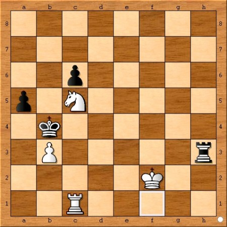 The position after Viswanathan Anand plays 75... Kb4.
