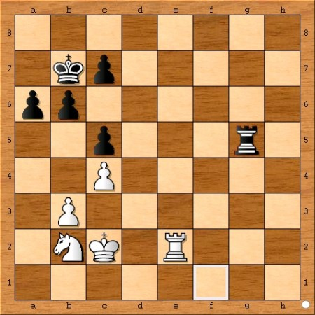 Position after Viswanathan Anand plays 60... Rg5.