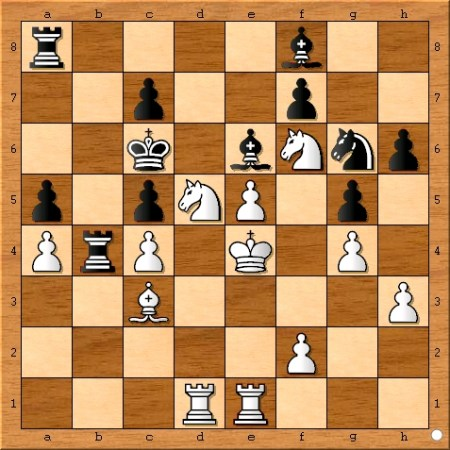 Position after Viswanathan Anand plays 27... Rb4.
