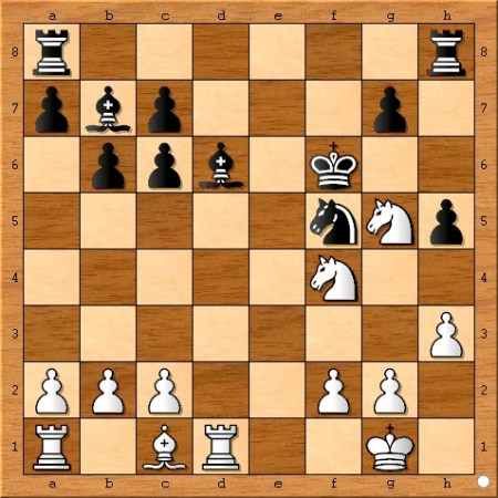 The position after Magnus Carlsen plays 16... Kf6.