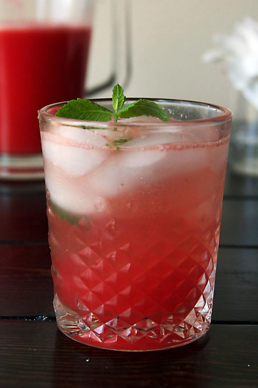 watermelon-gin-mint-fizz-6