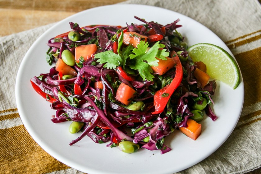 red-cabbage-salsa-3