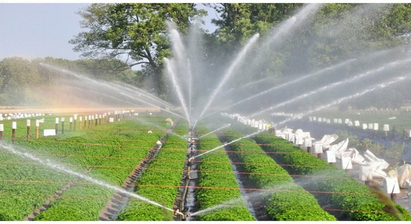 Sprinkler Irrigation – Advantages & Disadvantages