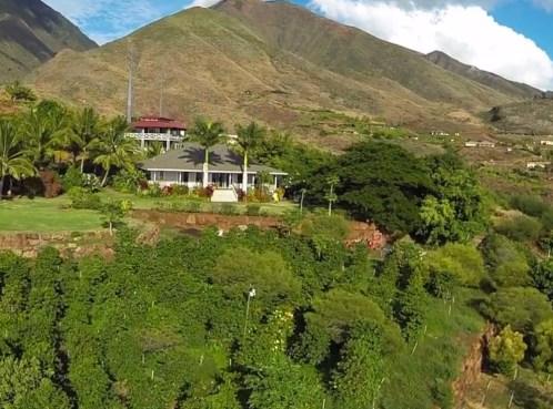 hawaii_farm