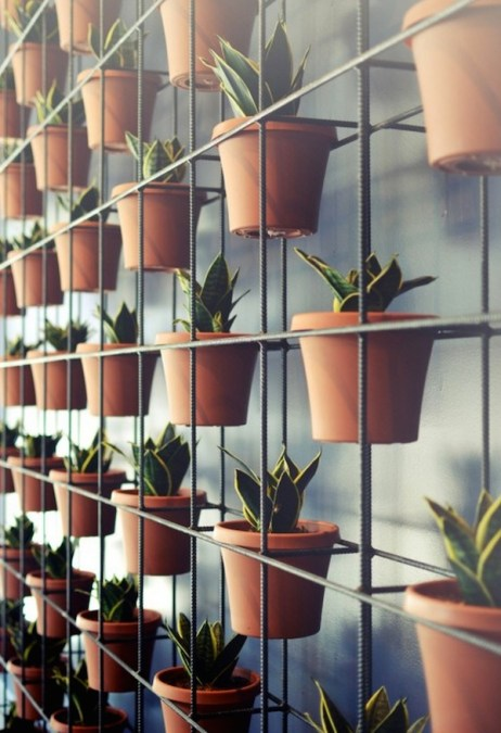 the_classic_plant_wall