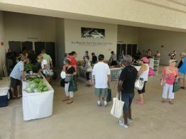 Roast and Roots showcased local farmers, chefs, musicians and others in a celebration of the big island's bounty.