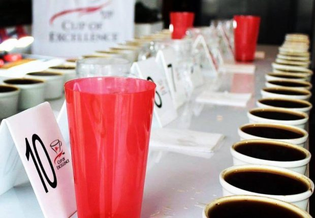 cup of excellence coffee cupping