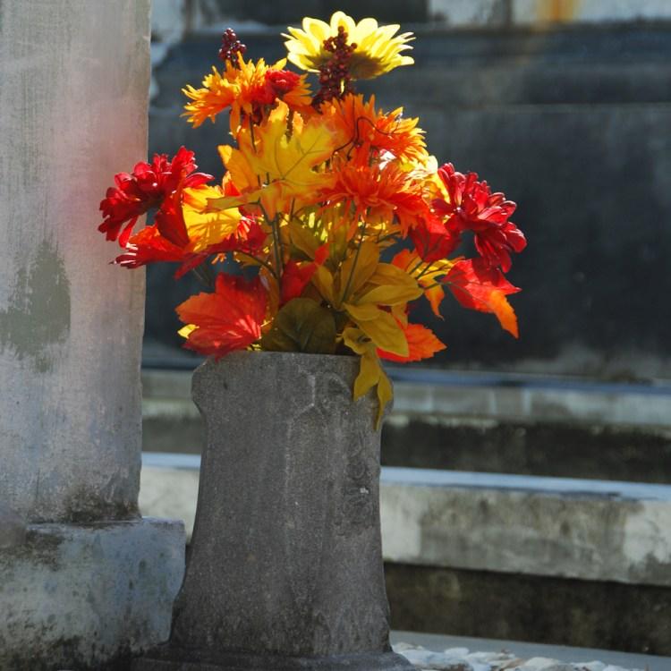 LFC1_Flowers
