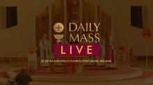 Live Daily Holy Mass 14 April 2021 St Peter & Paul's Church Ireland