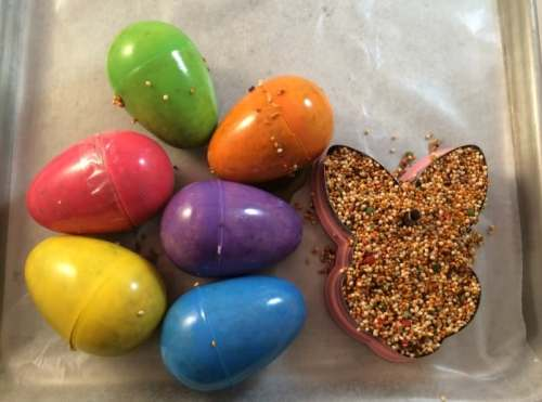 DIY Bird Feeders Easter Craft