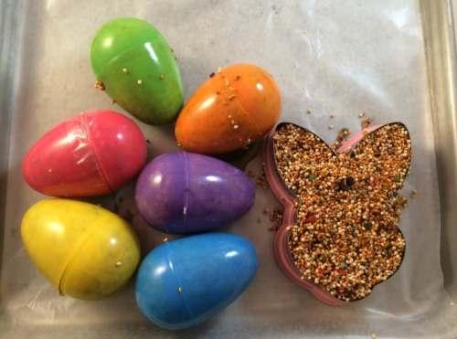 DIY Bird Feeders Easter Craft