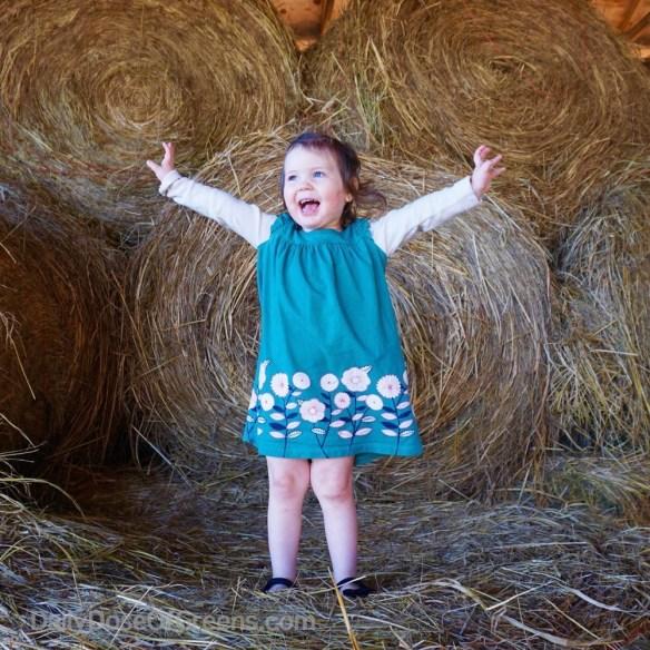 Abby on the farm