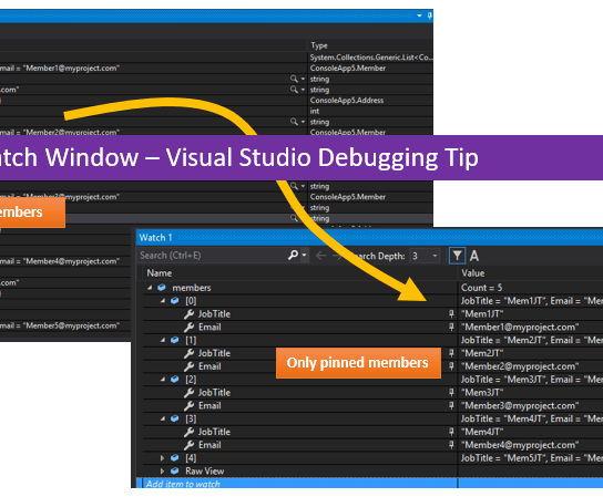 Filter Pinned Members in Watch Window – Debugging Tip