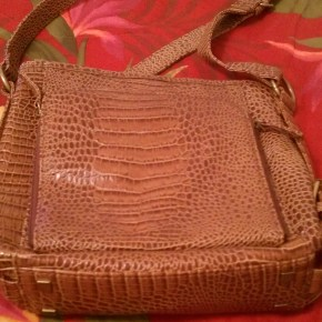 Crossbody Bag: Back View