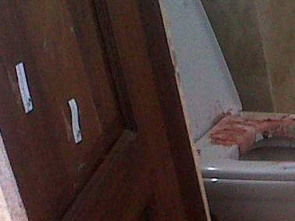 Oscar Pistorius Murder Scene Photos Revealed