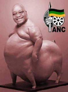 Jacob Zuma edited into a pig.