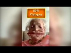 Watch People Die Inside😂 |•New Funny Videos😅2021 | Funny Fails