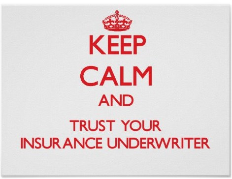 keep_calm_and_trust_your_insurance_underwriter_poster-r5e4868429f014108b0ff8c492275b184_wvu_8byvr_512