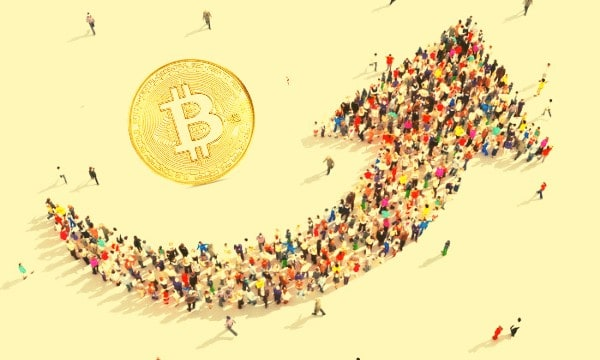 Prices Bounce Back and Crypto Population Hits 221 Million