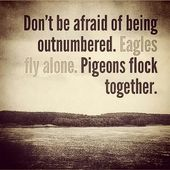 Don't be afraid of being outnumbered. Eagles fly alone. Pigeons flock together…