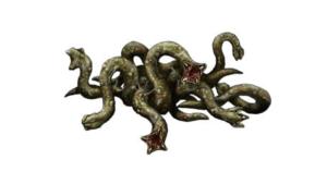 Sliding Worm Image