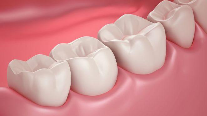 Exploiter ce gène pourrait un jour permettre de faire repousser vos dents perdues