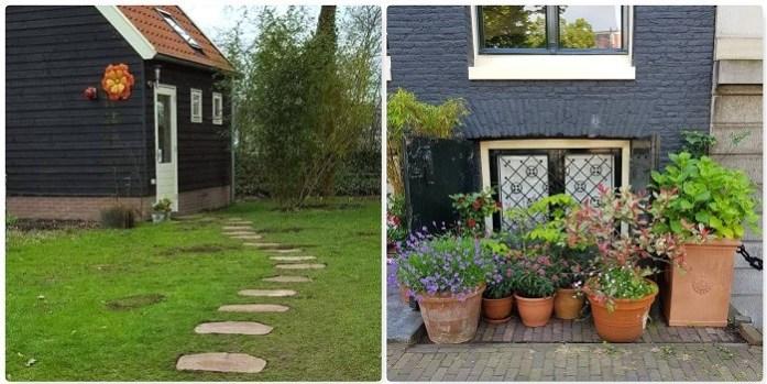 Parasolboom In Tuin : 5 simpele tips voor een spannende tuin ⋆ dailygreenspiration