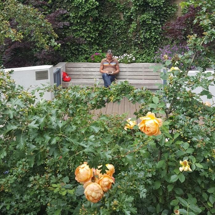 Marchmont Community Garden