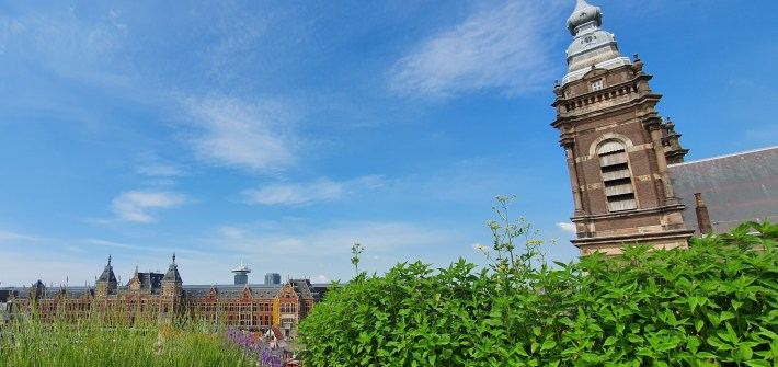 artikel over bkauwgroene daken in Amsterdam