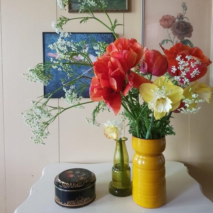 bloembollen tulpen narcissen