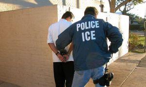 immigration-arrests
