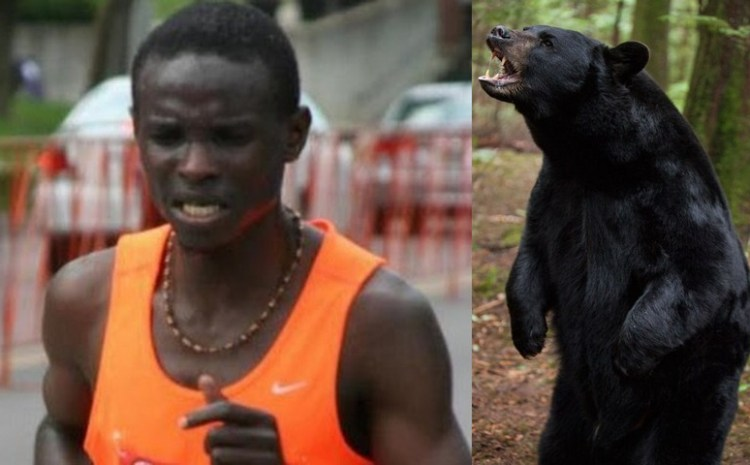 Could college student, a professional runner beat two charging black bears?