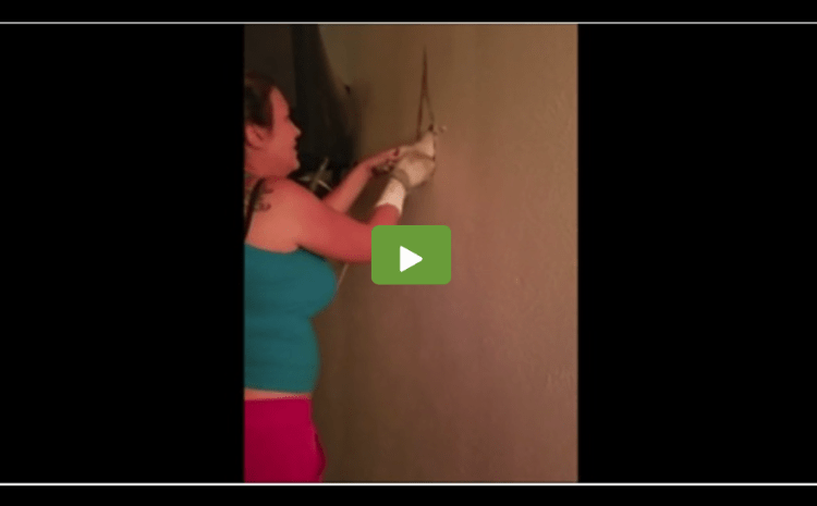 She Heard A Strange Noise From Inside The Wall, Couldn't Believe Her Eyes When She Opened It