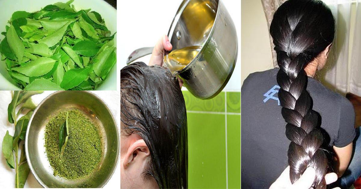 Homemade Natural Hair Growth Oil