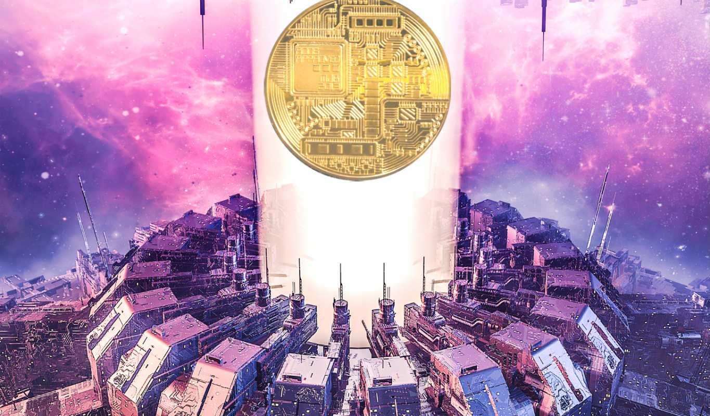 Alpha Drop: A Look at Polychain Capital's Crypto Portfolio   The Daily Hodl