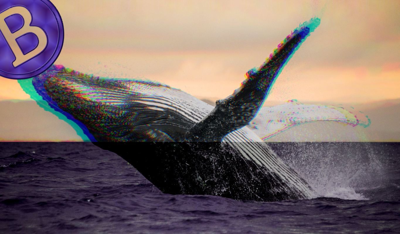Quant Analyst Who Predicted Bitcoin Rise to $100,000 Says BTC Whales Quietly Fueling Crypto Correction