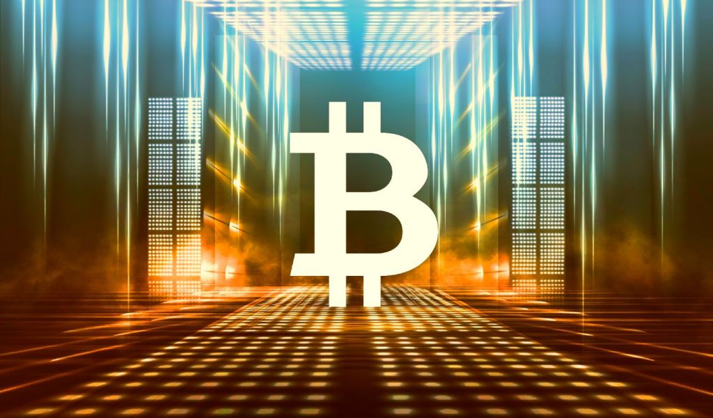 Bitcoin and Crypto Here To Stay but Won't Be Used in Most Payments, Says Former World Bank Chief Economist
