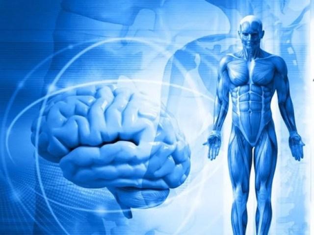 Психосоматика: мифы иреальность