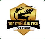 tbf eyinloju fish logo