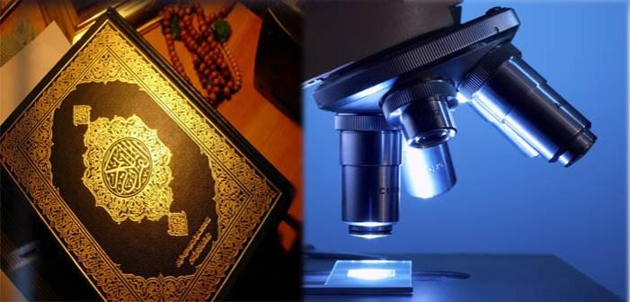 منزل اور حکمتِ عملی۔۔۔۔محمد رضی الاسلام ندوی
