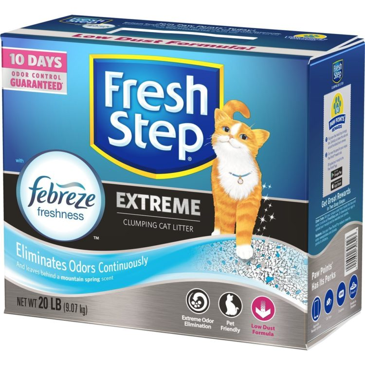Top 10 Best Cat Litter Products Reviewed In 2019 Top 10
