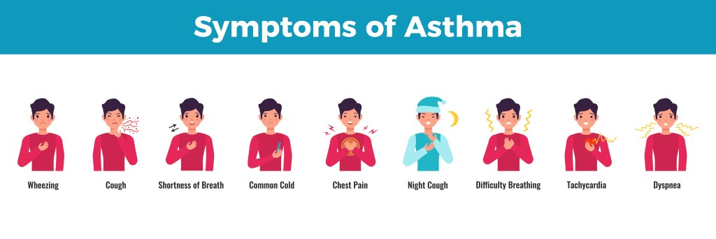 Asthma : 10 Easy Asthma Prevention Measures 2 - Daily Medicos