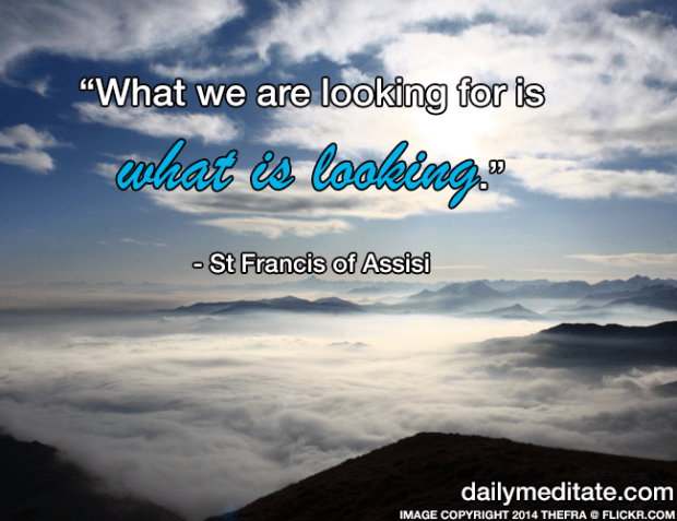 """""""What we are looking for is what is looking."""" - St Francis of Assisi"""
