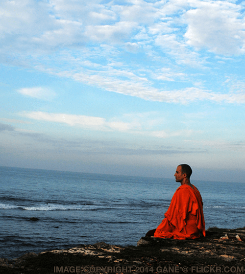 Meditation Quote 42 at DailyMeditate.com