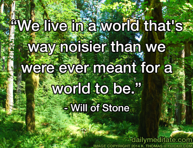 """""""We live in a world that's way noisier than we were ever meant for a world to be."""" - Will of Stone"""